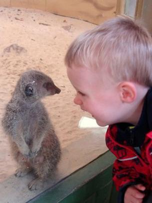Jamie and a meerkat
