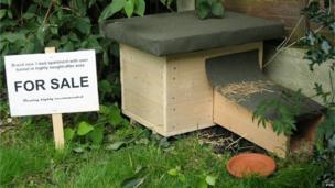 A purpose built hedgehog home.