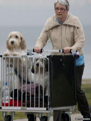 An owner arrives with her dogs on the second day of the Crufts dog show on Friday