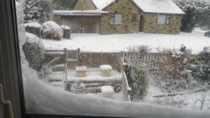 Snowy garden. Photo: Susan Walker