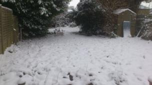 Snowy garden. Photo: Brian Lavington