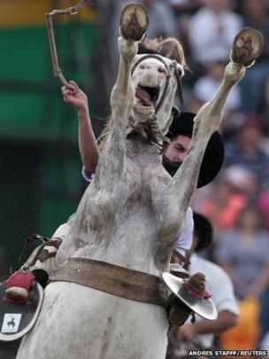 A gaucho rides an unbroken horse