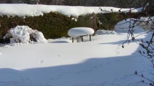 Snowy table in Kirkcudbright