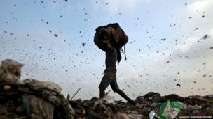 Insects and birds fly on a rubbish dump as a rag picker collects scraps in Delhi