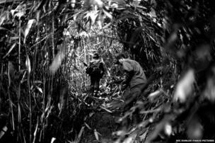 Karenni insurgents move through the jungle