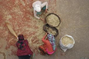 Nepali women sifting their grains after harvesting them from the field