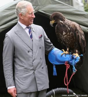 The Prince of Wales holds a bald eagle called Zephyr