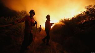 Firefighters try to extinguish a forest fire in Tondela, near Viseu 23 August, 2013.