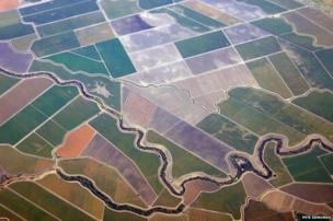 Aerial view of fields