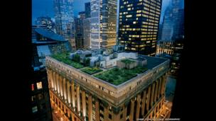 Chicago City Hall's award-winning rooftop