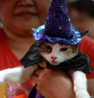 A woman holds her pat cat dressed as a witch