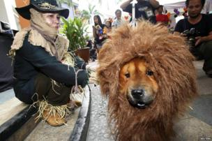 A pet owner sits next to her dog which is dressed in a lion costume