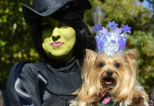Minnie and her dog Elanor dressed witches