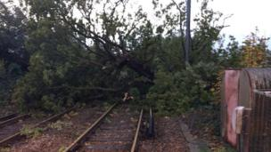 Tree on railway line in Keymer