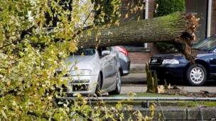 An uprooted tree on a car at the Ruysdaelkade canal in Amsterdam (28 October 2013)