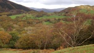 Valley viewed from slopes of Cadair Idris, Snowdonia