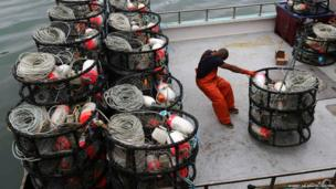 A fishermen loads crab pots onto a fishing vessel at Fishermen's Wharf ahead of the opening of the commercial Dungeness crab season, in San Francisco