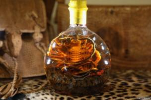 A snake in a bottle of spirits
