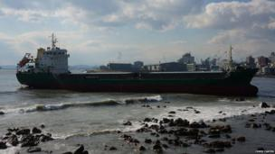 Large ship run aground sits in a bay. Photo: Chris Carter