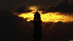 Birds fly above a mosque during sunset in Algiers, Algeria - Sunday 1 December