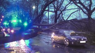 A car damaged by a fallen tree in Kelvin Way, Glasgow