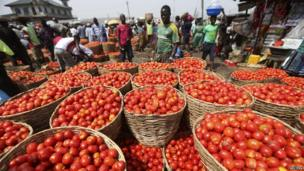 Tomatoes are displayed in baskets for sale at a local food market in Lagos December 16, 2013.