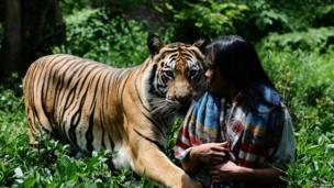 Abdullah Sholeh and Bengal tiger Mulan Jamilah.