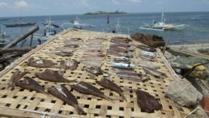 Fish being dried on Bantayan Island