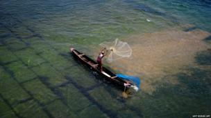 An Indian fisherman casts his net into the Mohanadi River near Munduli