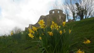 Old Dinefwr Castle