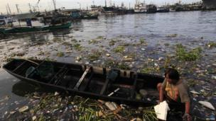 Natividad Badiana, 45, rides a small boat to collect recyclable plastic bottles floating on the murky water in Navotas City, north of Manila June 11, 2014
