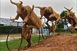 Cows made from hay bales