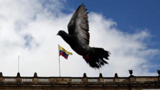 Paloma frente al Congreso de Colombia