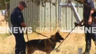 Police examine a property at Young, in rural New South Wales