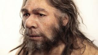 Reconstruction of a Neanderthal (Homo neanderthalensis) based on the La Chapelle-aux-Saints fossils
