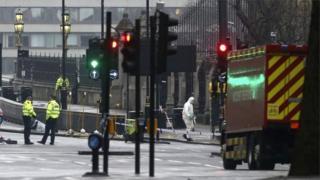 英國議會大廈外襲擊:警方已拘捕七人