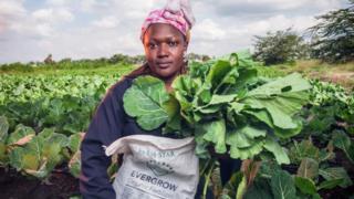Woman farmer holding cabbage and bag of organic fertiliser