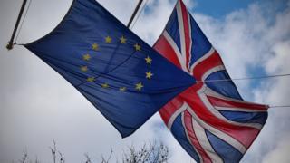 EU and EU flags flying