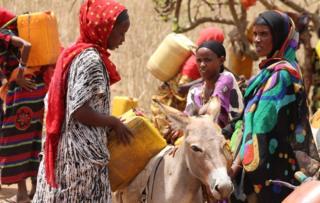 Women with donkeys in Marsabit, Kenya