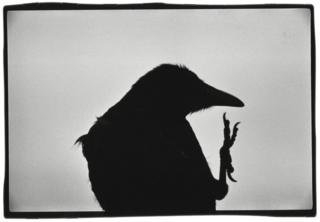 Erimo Cape, 1976 © Masahisa Fukase Archives