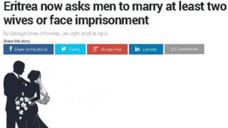 Screen grab from online newspaper