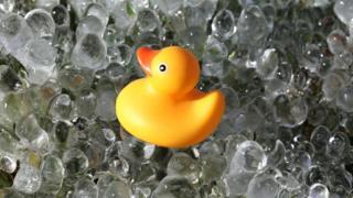 buz banyosu yapan plastik ördek