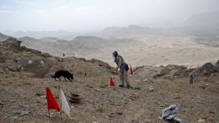 افغانستان: طالبان در دو سال گذشته ۴۰۰ کیلومترمربع مین کاشته است