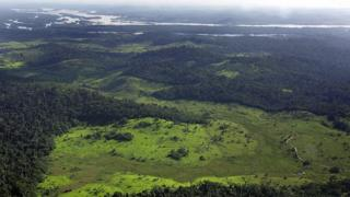 Overview of a deforested area in the border of Xingu river, 140 Km from Anapu city in the Amazon rain forest, northern Brazil, 19 February 2005.