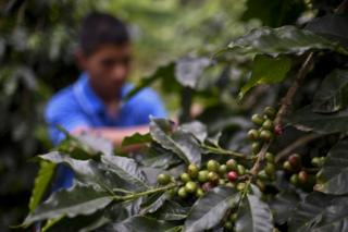 Colombian child soldier deal agreed