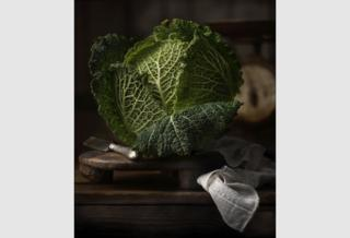 Savoy Cabbage by Flavio Catalano