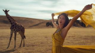 In a still from the video Taylor Swift's glamorous dress blows in the wind, while a giraffe stands nearby