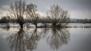Flood water gathers in fields in Somerset following Storm Angus