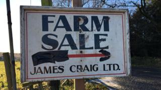 farm sale sign