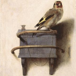 Where Is The Goldfinch Painting Displayed